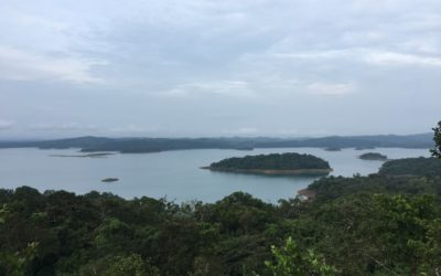 Honnemaradu- An Ecstasy for Adventure Enthusiasts