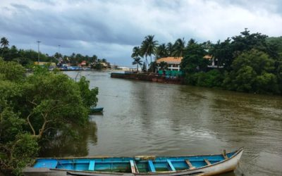 MONSOON IN GOA- BEYOND CHURCHES AND BEACHES