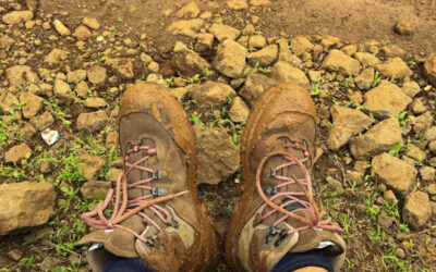 How to choose Trekking Shoes- Beginners Guide to choose the right trekking shoes