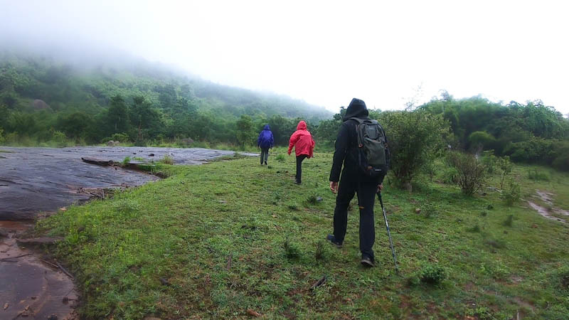 Monsoon Trek- Why you should go for it?